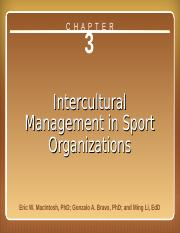 3. Intercultural Management in Sport Organizations