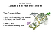 Ward_Lect2A_tree_concepts_ppt