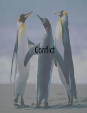 NCM Week 3 (Conflict-system approach)