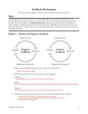 Kami_Export_-_Madyann_Saidi_-_27_Feedback_Mechanisms-S.pdf
