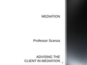 ADVISING THE CLIENT IN MEDIATION