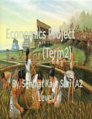 Economics Project - Term 2