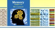 DAY8_Memory_10.29.12 (1).ppt