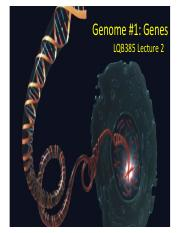 lecture 2-genes