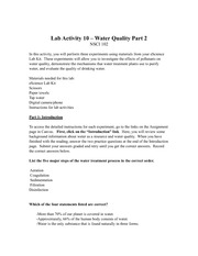 Lab Activity 10 worksheet