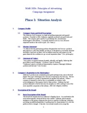 Shell Phase I Situational Analysis Shell Online 2012 - Leland Sandberg (1)