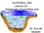 Freshwater Foodwebs & Communities