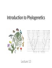 BIOL 3040 Lecture 13 Intro to phylogenetics