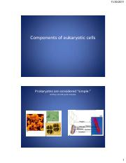 Components_of_Eukaryotic_Cell_pdf.pdf