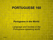 Language and Society in the Portuguese-speaking world