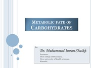 Metabolic fate of  Carbohydrates