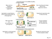 Part I Cell Signaling Slides