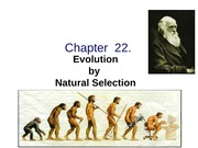AP_Bio_-_Chapter__22_evolution_history_natl_sel