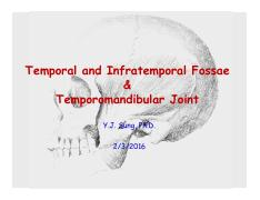 2-3-2016 Temporal and Infratemporal Fossae.pdf
