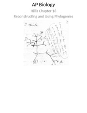 ch 16 ppt reconstructing and using phylogenies 2013-2014.pptx