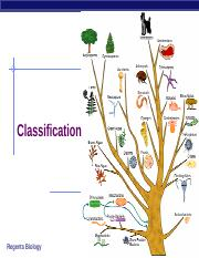 Classification and Bacteria.pptx