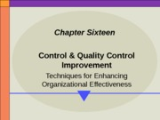MGT 330 - Ch. 16 - Control Systems(1) PPT