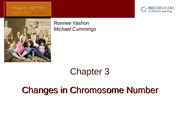 Chapter 3 — Changes in Chromosome Number