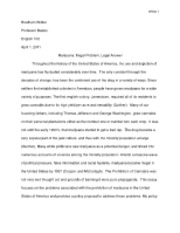 Policy Proposal Essay