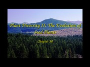 30-Plant Diversity II-The Evolution of Seed Plants