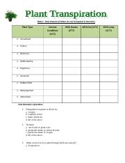 Plant Transpiration Worksheet.doc