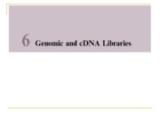 Chapter_6_-_Genomic_and_cDNA_Libraries_v