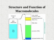 BT-101BT-101Structure and Function of Macromolecules-lec2