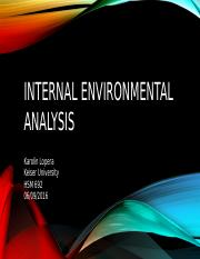 Internal environmental analysis