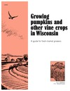 Pumpkins. Growing Pumpkins and other Vine Crops
