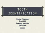 Tooth-Identification