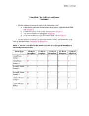 Printables The Virtual Cell Worksheet Answers the cell cycle and cancer worksheet virtual lab 3 pages doc