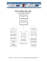 IT - Hippa - Information Security Flow Chart