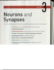 R7-Revised - Eagleman on neuronal communication - electrical only.pdf