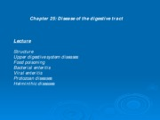 Chapter 25 PPT spring