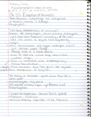 CHM 141 Ch 33 Notes
