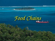 food_chains