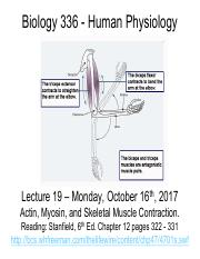 POGIL activity 5 Muscle contraction ANSWER KEY.pdf - 55 ...