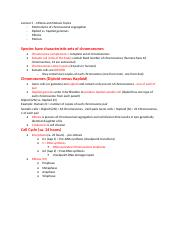 Genetics lecture 5 mitosis and meiosis.docx