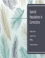 Special Populations in corrections.pptx