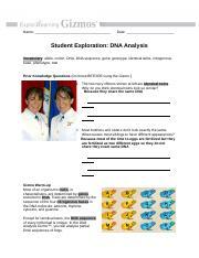 DNA Analysis .docx - Student Exploration DNA Analysis ...