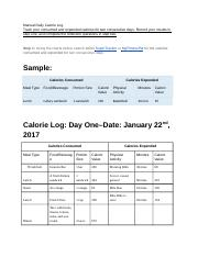 4 05 manual daily calorie log track your consumed and expended
