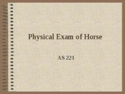 Physical_Exam_of_Horse