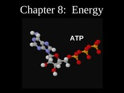 BIO 151 Lecture 8b Energy(1)