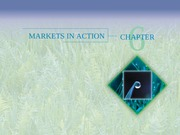 Chapter 6 - Markets in Action