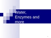 Food Chemistry Water Enzymes and more