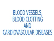 Blood vessels lecture (7:16:15)