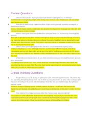 3.07 Review and Critical Thinking Questions.docx