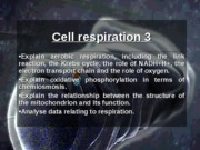 12903874-Option-Cell-Respiration-2
