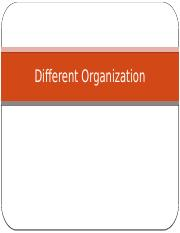 Different_Organization.pptx