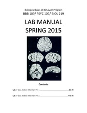 Brain Dissection Manual 2015